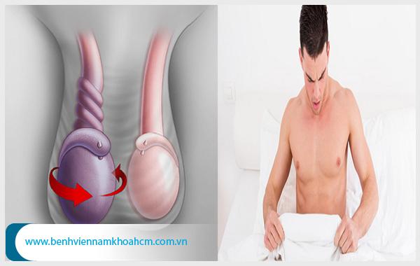 Tinh hoàn ở nam giới đảm nhiệm chức năng sản xuất tinh trùng