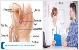 Những phương pháp điều trị vôi hóa tuyến tiền liệt hiệu quả